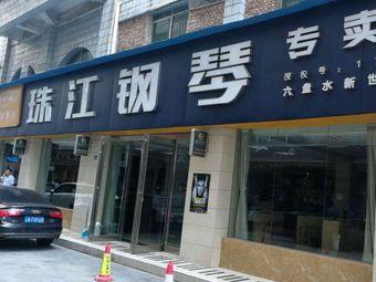 新世纪琴行(珠江钢琴专卖店)