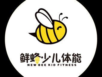 鲜蜂少儿体能馆(金紫店)
