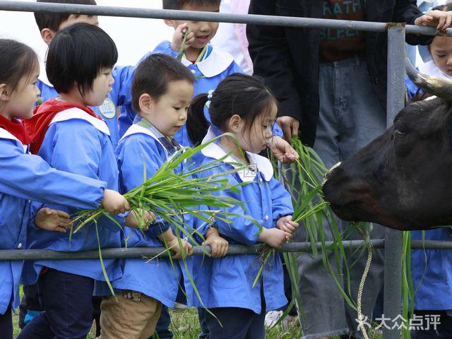 花田儿童社区托育园