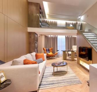 经济型30平米小户型轻奢风格客厅设计图