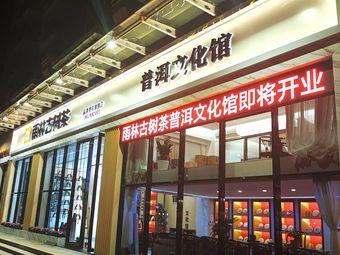雨林古树茶·普洱文化馆