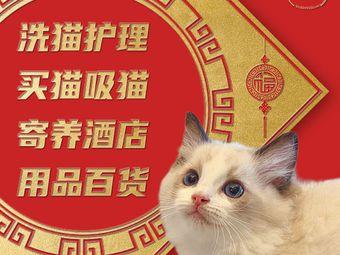 糯米寄养猫舍(珠江新城店)