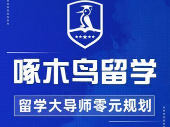 啄木鸟留学语培中心(顺城东塔店)