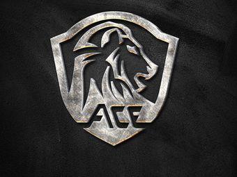 ACE国际健身游泳工厂