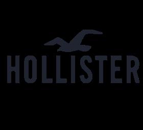 Hollister(七宝万科店)