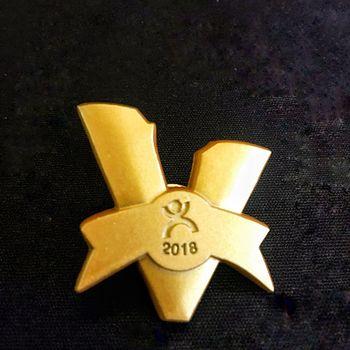 2018 V-Dper荣誉纪念徽章