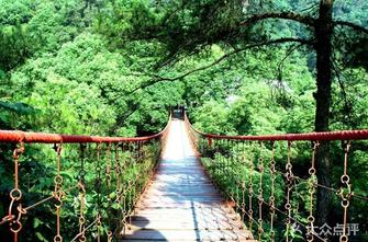 歌乐山国家森林公园