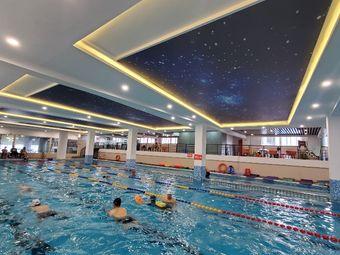 型者游泳健身