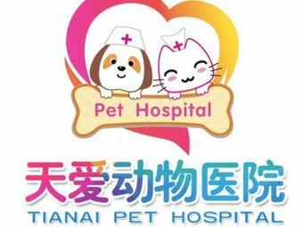 天爱小动物医院