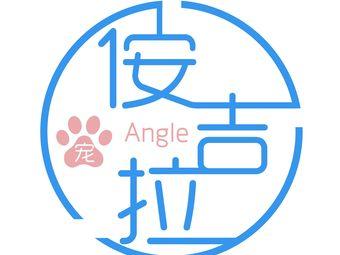 ANGLE PET·侒吉拉宠物