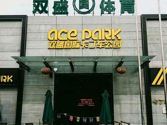 双盛国际卡丁车公园(济南旗舰店)