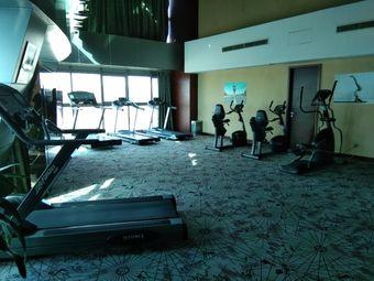 阿尔卡迪亚酒店文景健身中心