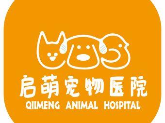 启萌优加动物医院