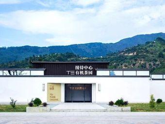 T三有机茶体验中心