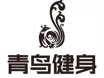 青鸟健身(城南店)