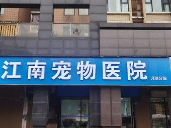 江南宠物医院(月湖分院)