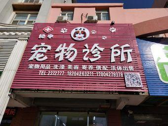 纪宇宠物诊所