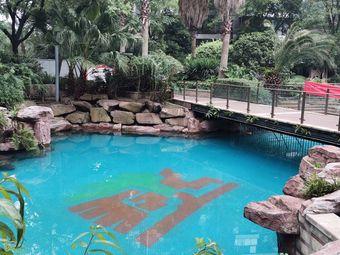 领跑健身恒温游泳馆(西江月馆)