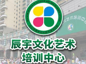 辰宇文化艺术培训中心(太阳城店)