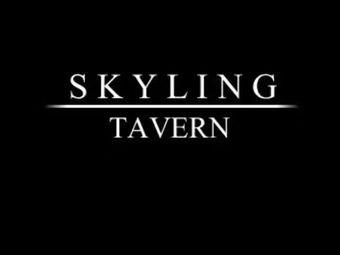 Skyling tavern 醉城