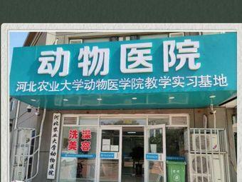 河北农业大学动物医院
