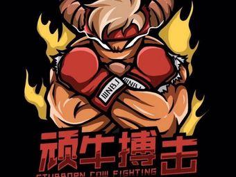 頑牛拳擊搏擊俱樂部
