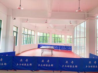 奕丹乒乓球