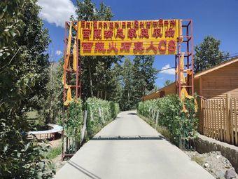 西藏火石真人CS