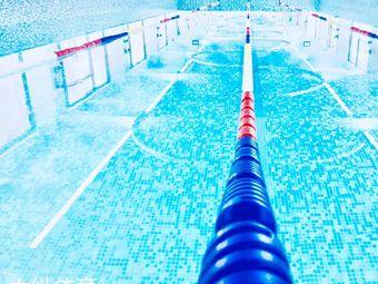 大城游泳培训