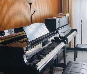 九弦钢琴(洺悦府校区)