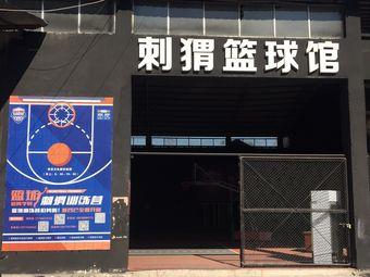 刺猬篮球馆