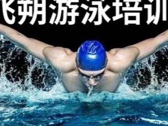 飞朔游泳培训(顺德店)