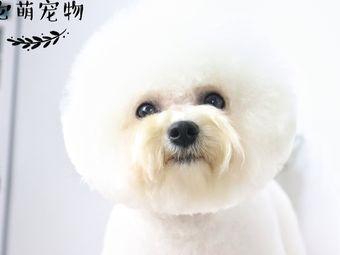 它萌宠物高端洗护美容