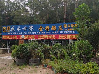 金榜钓虾鹅庄