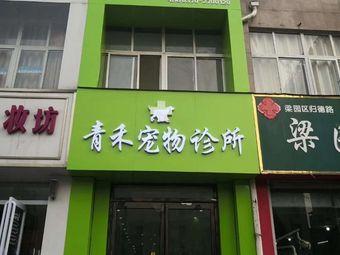 青禾宠物诊所(梁园区店)