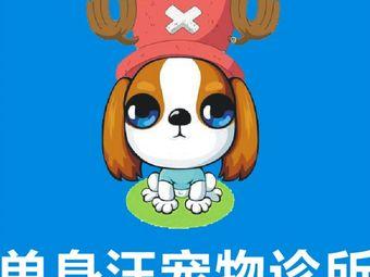 单身汪宠物诊所(泉州浮桥店)
