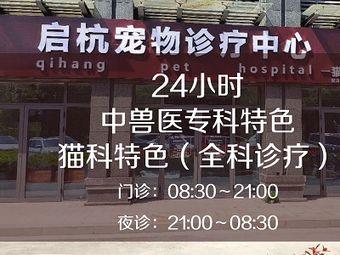 启杭宠物诊疗中心·中兽医24h急重症转诊中心猫科特色
