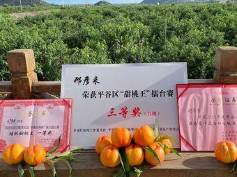 平谷大桃采摘园(刘家店店)