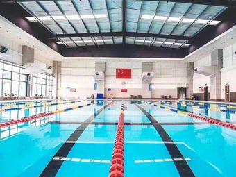 飞鱼游泳培训俱乐部