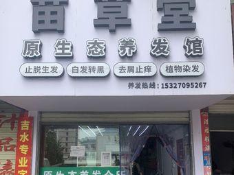 苗草堂原生态养发馆(大悟总店)
