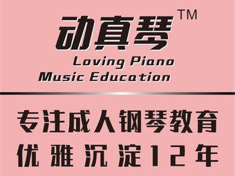 动真琴成人钢琴(万菱汇中心)