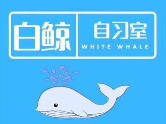 白鲸自习室