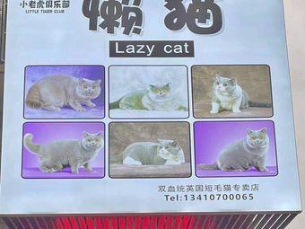 懒猫宠物生活馆