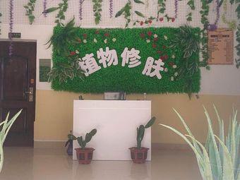 植物修肤美容美体养生馆