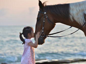 安卡迪海边骑马摄影