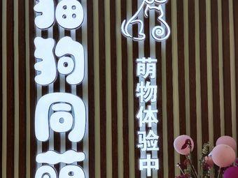猫狗同萌(苏宁店)