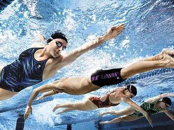 企鹅岛体育游泳培训(万达广场店)
