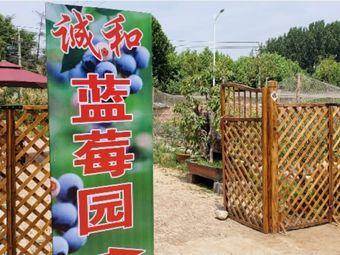 诚和蓝莓园(兖州店)