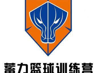 蓄力篮球训练馆(开发区店)