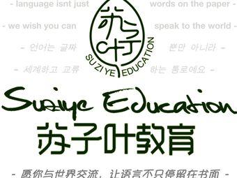 苏子叶教育